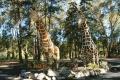 El Jaguel y El Parque Indígena